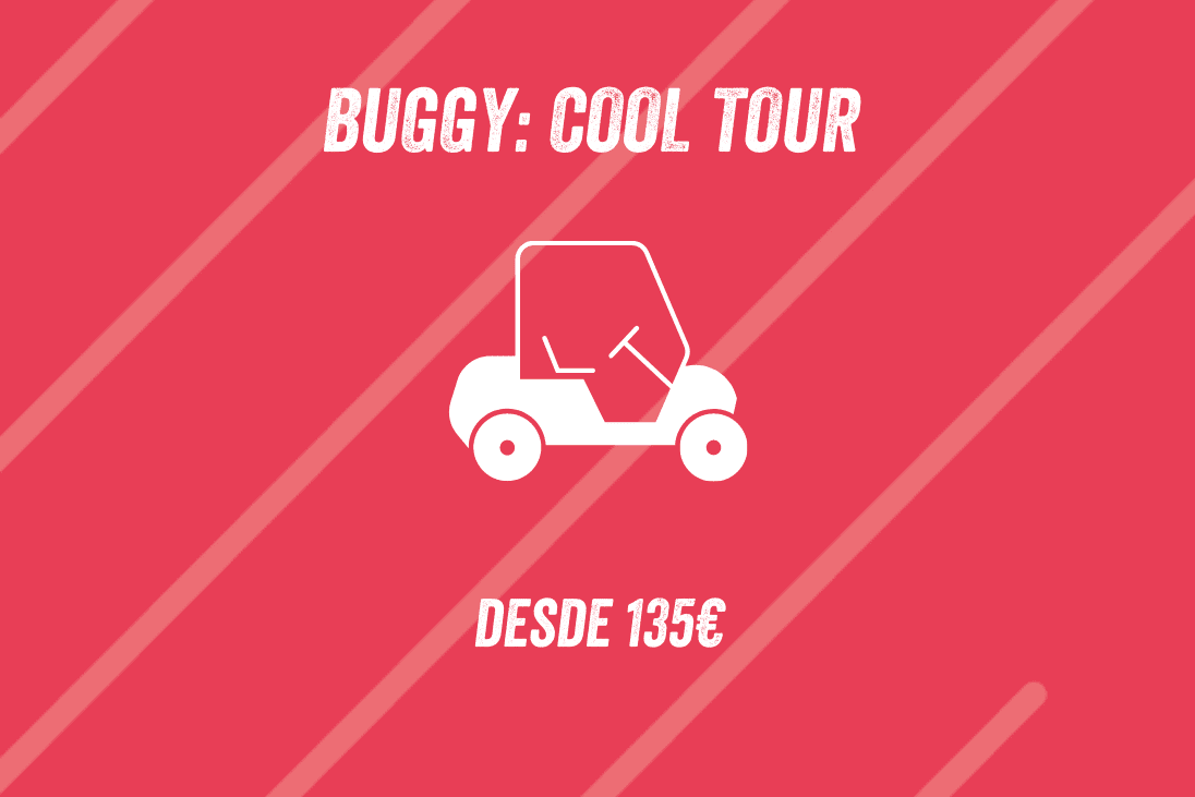 BUGGY: COOL TOUR